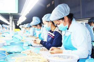 Khánh Hòa: 500 công nhân được làm việc trở lại