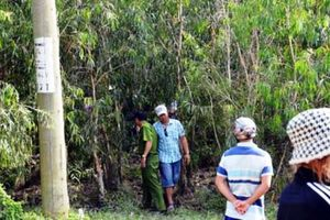 Hai bố con bị chém chết trong rừng
