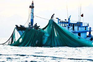 Tìm kiếm tàu cá cùng 7 thuyền viên mất liên lạc nhiều ngày