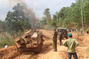 Tạm giữ 5 đối tượng khai thác hơn 76 m3 gỗ trong rừng phòng hộ