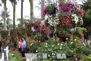 Hàng nghìn người tham dự 'Ngày hội hoa hồng Bulgaria và bạn bè'