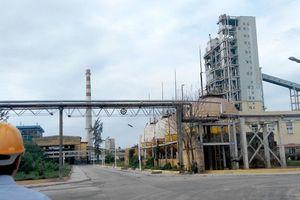 Vinachem lên lộ trình bán vốn tại hàng loạt các công ty hóa chất