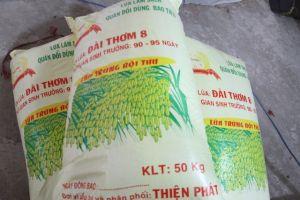 Doanh nghiệp làm giả lúa giống bán cho nông dân