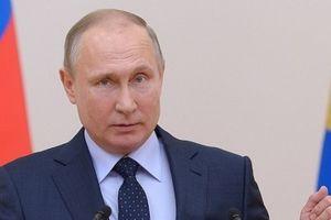 Tổng thống Putin: Nga đâu phải muốn khua vũ khí rổn rảng ở Syria
