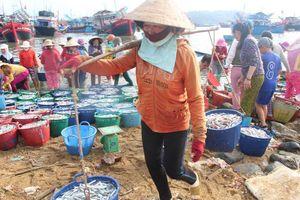 Quảng Nam: Phụ nữ làng biển