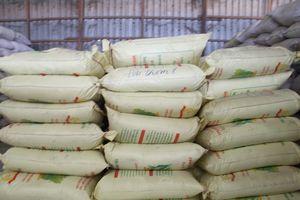 Cần Thơ: Phát hiện làm giả nhãn hiệu hơn 1.000 tấn lúa giống