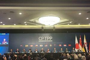 CPTPP và dòng chảy FDI
