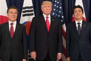 Phản ứng của Hàn Quốc, Nhật Bản trước cuộc gặp lịch sử Trump-Kim