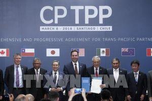 CPTPP - hướng đi của thương mại tiến bộ thế kỷ XXI