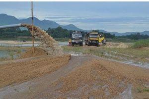 Quảng Ngãi: 1 chủ tịch huyện bị kỷ luật vì làm đường