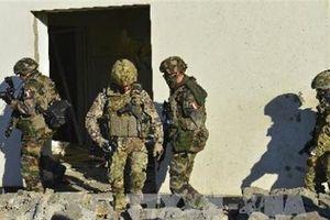 NATO tập trận quy mô càng lớn, Nga càng thắng lớn?