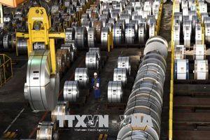 EU, Nhật Bản đối thoại với Mỹ về chính sách thuế thép và nhôm mới