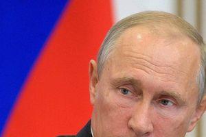 TT Putin phản ứng quyết liệt trước cáo buộc Nga can thiệp bầu cử Mỹ