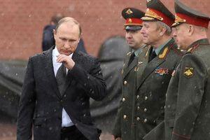 Ông Putin nói về kinh nghiệm KGB và công việc dân sự