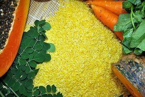 Australia và New Zealand sử dụng Gạo vàng làm thực phẩm