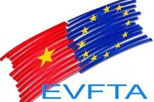 Eurocham: EVFTA có khả năng thông qua vào cuối năm nay