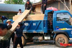 Lai Châu: Lâm tặc ngang nhiên bốc gỗ giữa ban ngày, kiểm lâm không hay biết
