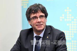 Tây Ban Nha yêu cầu truy nã toàn cầu cựu Thủ hiến Catalonia