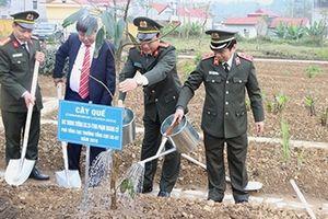Tổ chức Lễ ra quân 'Mùa xuân trồng cây thuốc quý'