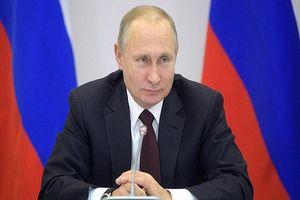 8 ứng cử viên Tổng thống Nga có chương trình tranh cử như thế nào?