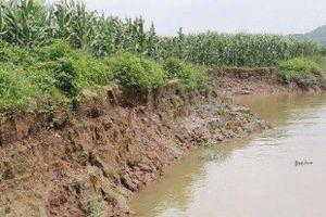 Người dân lo lắng trước nguy cơ mất đất do 'cát tặc' gây ra