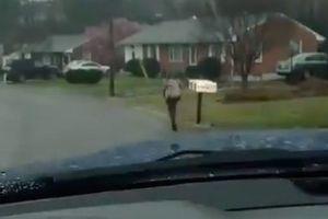 Phạt con chạy bộ đi học dưới mưa, người cha gây 'sóng mạng'