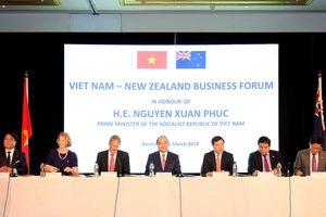 Thúc đẩy hợp tác Việt Nam-New Zealand trong điều kiện CPTPP