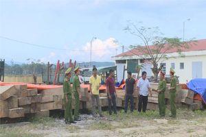 Bắt giữ 7 đối tượng trong vụ vận chuyển gỗ lậu tại huyện M'Đrắk