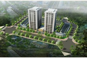 Bị phạt 80 triệu đồng, Khai Sơn ngừng thi công 26 biệt thự tại Khai Sơn Hill