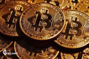 Bitcoin rơi xuống ngưỡng 8.000 USD, nhà đầu tư lo lắng