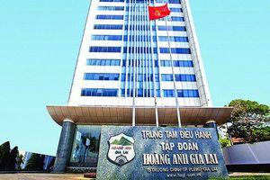 Một lưu ý về thương vụ nghìn tỷ HAG mua Hưng Thắng Lợi