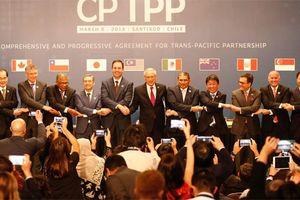 CPTPP - Hiệp định thương mại thế kỷ 21