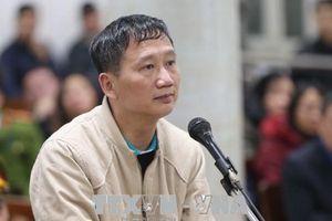 Con trai Trịnh Xuân Thanh kháng cáo đề nghị được trả lại tài sản