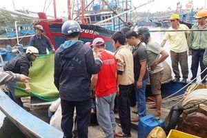 Huế: Một ngư dân rơi xuống biển tử vong khi đi đánh cá