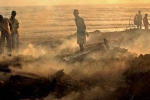 Thiên tai gây tổn thất hàng tỷ USD cho nông nghiệp