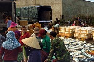 Ngư dân trúng lớn mẻ cá bè xước, thu gần 1 tỷ đồng