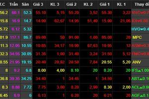 Cổ phiếu thủy sản chìm trong sắc đỏ vì cá tra bị áp thuế cao kỷ lục vào Mỹ