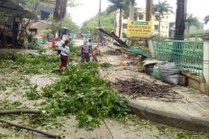 Lào Cai, Sơn La và Bắc Cạn khắc phục hậu quả lốc xoáy, mưa đá