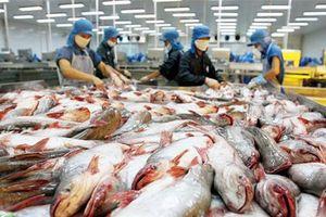 Bị áp thuế vô lý, doanh nghiệp cá tra xem xét khởi kiện DOC