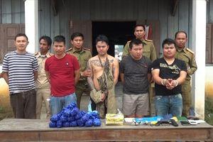 Quảng Trị: Bắt vụ vận chuyển hơn 50.000 viên ma túy tổng hợp và 1kg ma túy đá