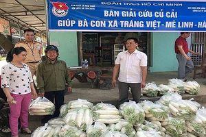 CSGT TP Hà Nội 'giải cứu' củ cải giúp nông dân