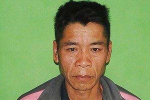 Người nước ngoài bị bắt khi đang vận chuyển 10 bánh heroin