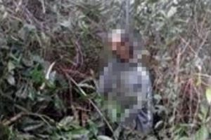 Huế: Bàng hoàng phát hiện nam thanh niên chết trong tư thế treo cổ trong rừng