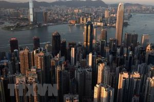 Nhiều cơ hội hợp tác kinh doanh giữa Việt Nam - Hong Kong (Trung Quốc) 