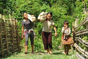 Nhiều mục tiêu của đề án bảo tồn tộc người ngủ ngồi ở Nghệ An bị thất bại
