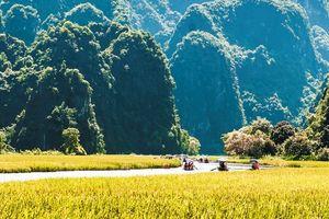 Tuần du lịch Ninh Bình 2018 'Sắc vàng Tam Cốc - Tràng An'