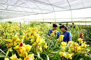 Vốn cho nông nghiệp công nghệ cao