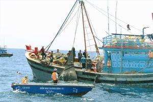 Quảng Bình siết chặt hoạt động nghề cá