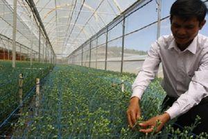 Agribank Lâm Đồng: Làm tốt vai trò đầu tư cho nông nghiệp, nông thôn