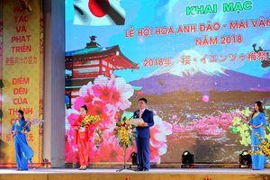 Quảng Ninh: Khai mạc Lễ hội hoa Anh đào- Mai vàng Yên Tử 2018